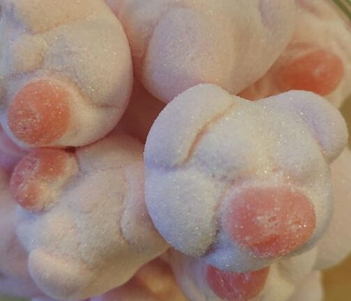 Marshmallow Red Nose Pigs